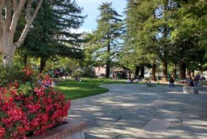 Los Gatos Town Plaza Park